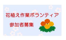 小須戸まちづくりセンターの花植え作業ボランティア募集!
